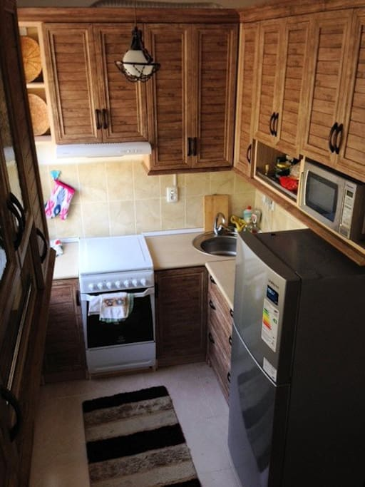 Fully-furnished kitchen with new appliances (toaster, microwave, fridge, electric oven and stovetop with ventilation). Large park-facing window with insect screen.