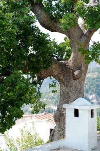 Amalfi Coast Rental Villa Partenope - Nocelle - Villa