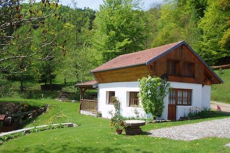 Kleines Chalet in Vogesen - Le Thillot - Talo