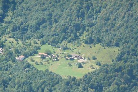 dolomiti b&b i boschi del castagno - Limana