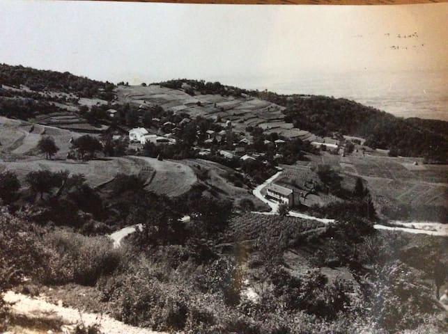 Appartamento in collina - Faedis