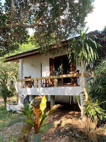 Samui Lamai paisible bungalow 1