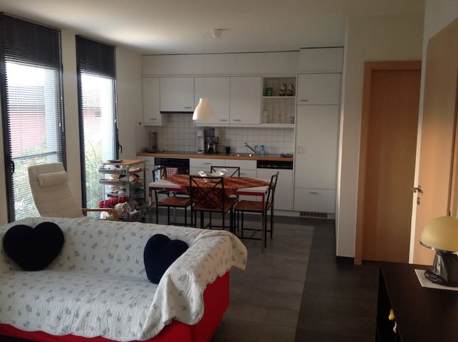 Grazioso appartamento indipendente - Agno - Apartment