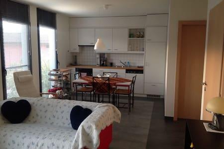 Grazioso appartamento indipendente - Agno - Appartement