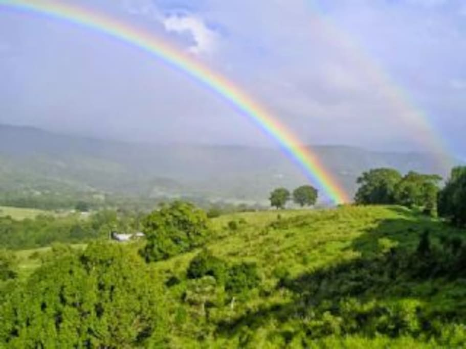 Rainbows in Mullum Creek Valley