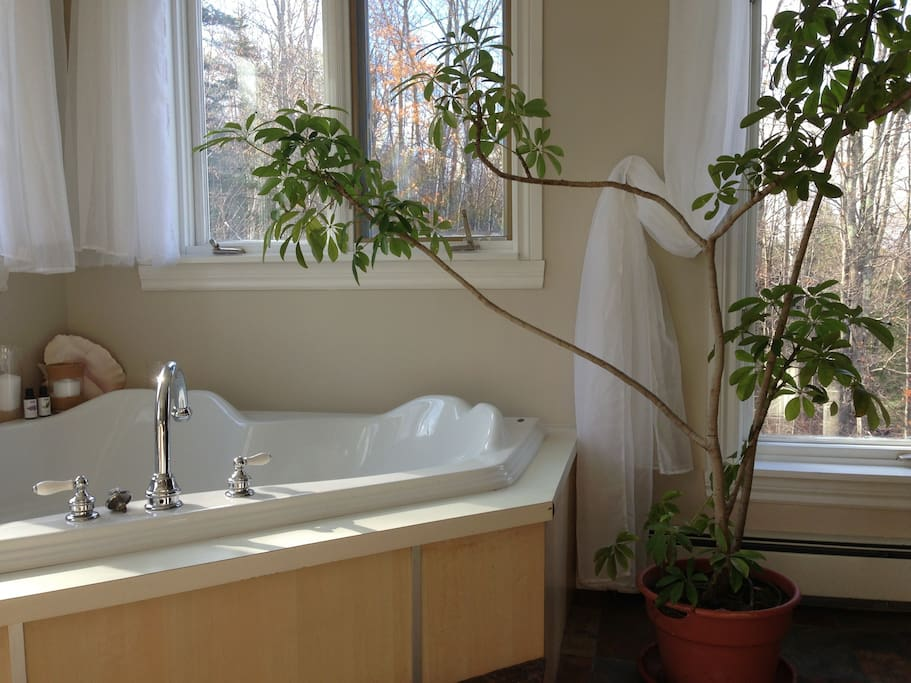 Your Treetops Ensuite two person tub with adjacent two person stone tile shower in your private bathing room.