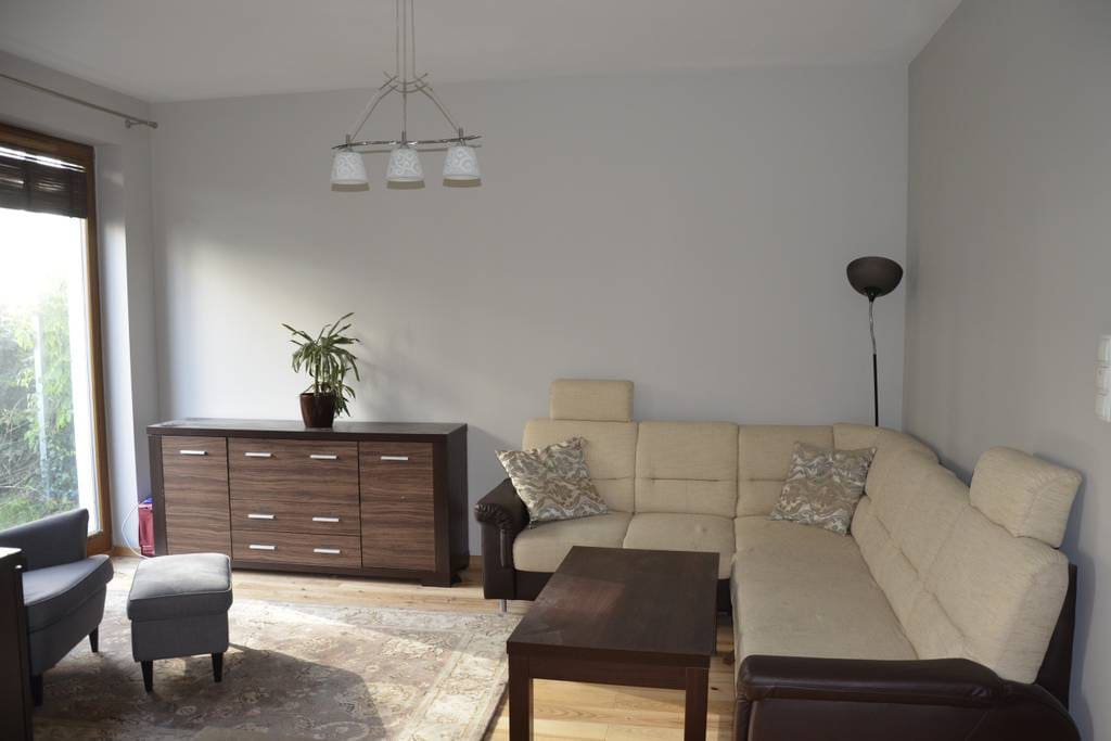 Salon z rozkładaną sofą.