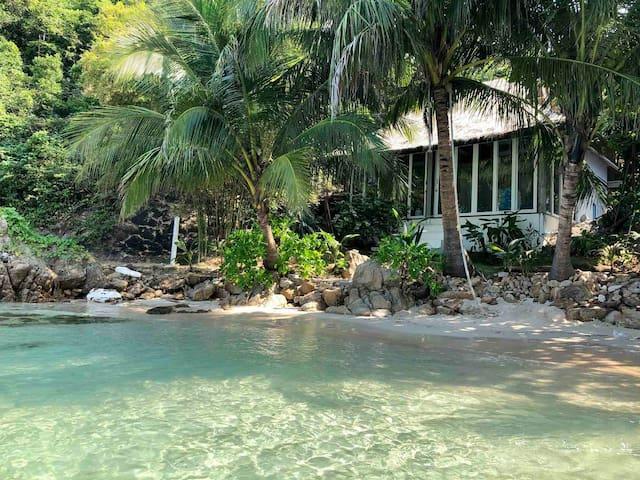 Beachfront House at Coconut Beach Bungalows