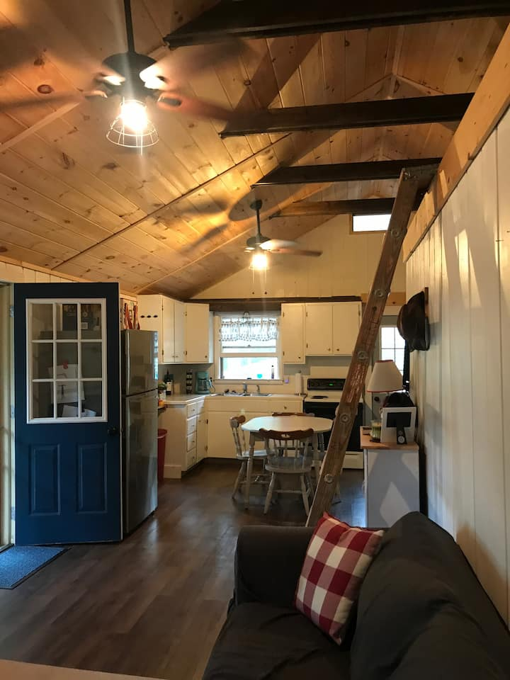 Completely updated School Section Lake Cottage