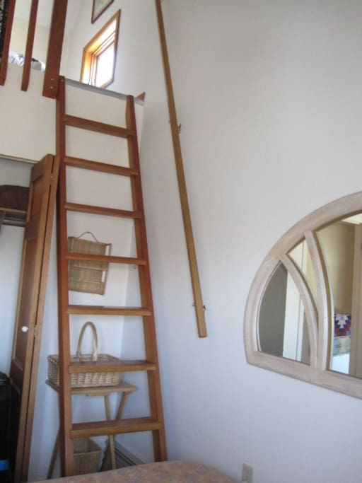 Ladder to the loft twin bed in the midnight Sun Room