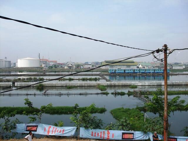 Fishing Depot - Semarang - House