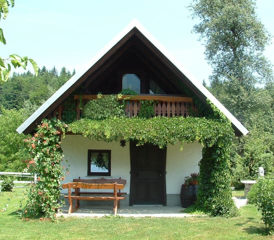 Apartment house in countryside -  Bled - Wohnung