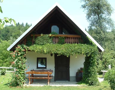 Apartment house in countryside -  Bled