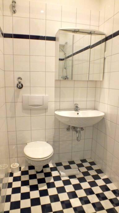 Bathroom: toilet and washbasin