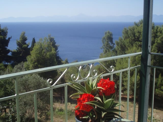 Studio with Sea View- Skopelos