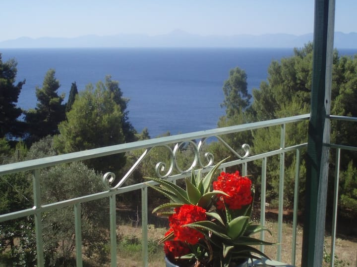 Studio with Sea View- Skopelos