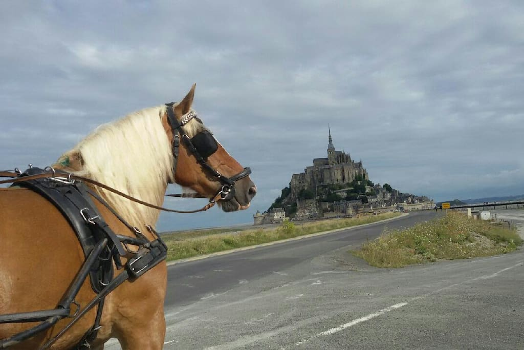 Uleane qui est allée au Mt St Michel par les chemins des pèlerins.........