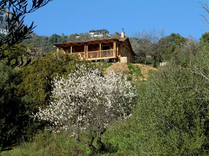 La Chozita, a wooden chalet in the mountains