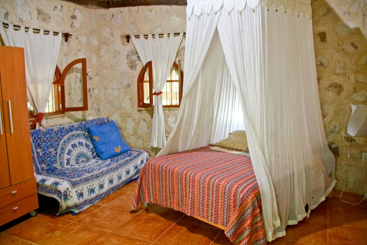 stay at Organic Yoga and rejoice!!! - Akumal - Bed & Breakfast