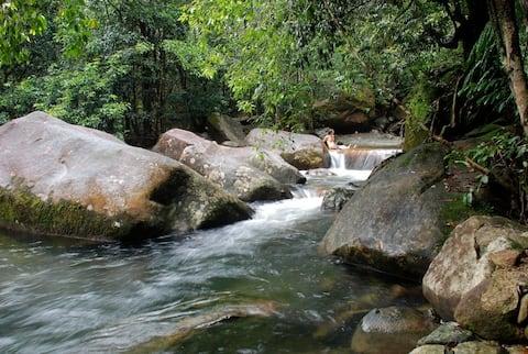 Stonewood Retreat - Daintree Rainforest