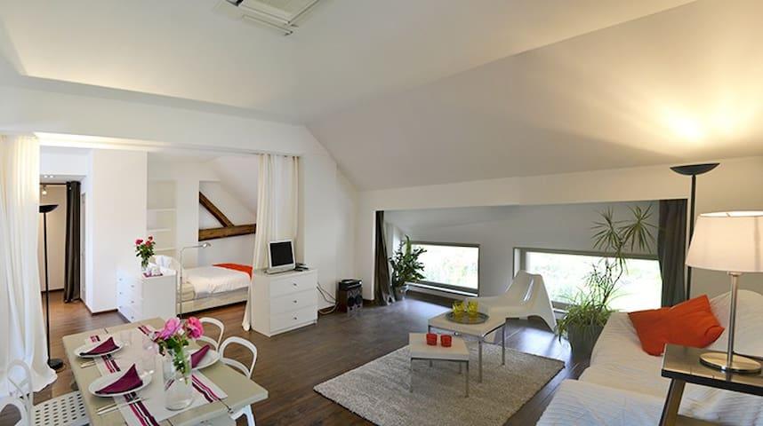 MODERN LOFT WEEKLY RENTAL in Savoie - Saint-Jean-de-la-Porte - Loft