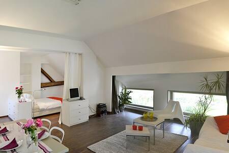MODERN LOFT WEEKLY RENTAL in Savoie - Saint-Pierre-d'Albigny - Loft