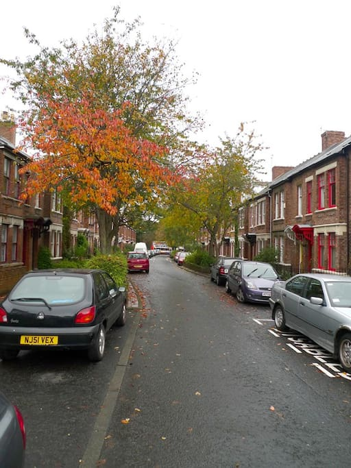 Street view. Sidney Grove