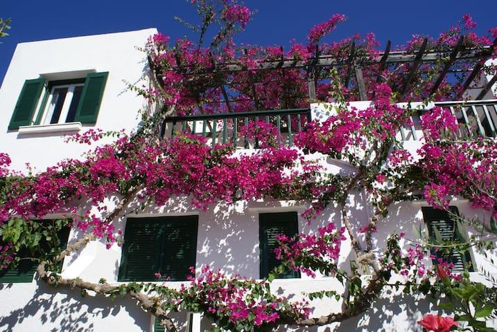 Quaint resort studio close to beach - Makry Gialos - Byt