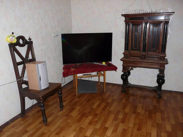 G. Potemkin's palace - Sankt-Peterburg - Appartement
