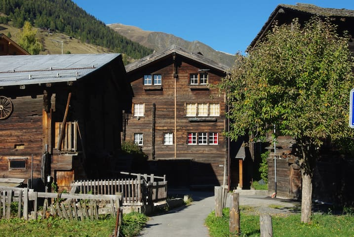 Charming flat in the Swiss Alps - Reckingen-Gluringen - Appartement