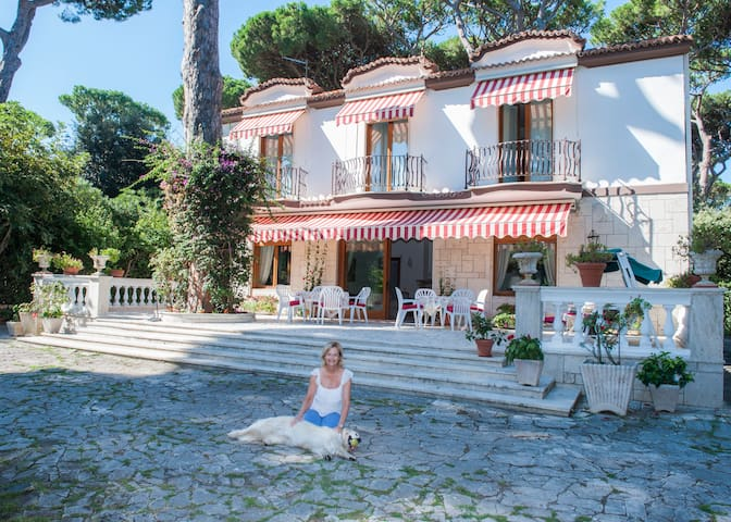 B&B Villa Bianca, Sun, Sea, Culture - Fregenae - Bed & Breakfast