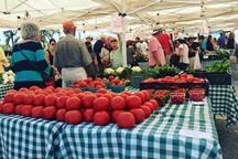 Sarasota Famers Market
