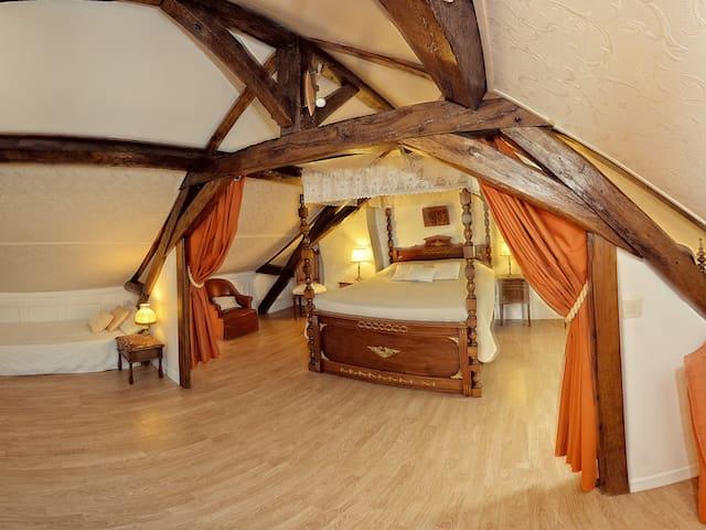 Sa très Grande chambre (50m²)