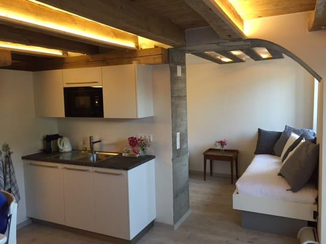 Studio de luxe à la Ferme - Cremin - Apartamento