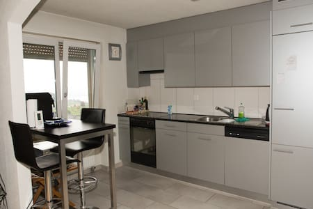 Aeschstrasse 20 Top Floor - Feusisberg - Apartment