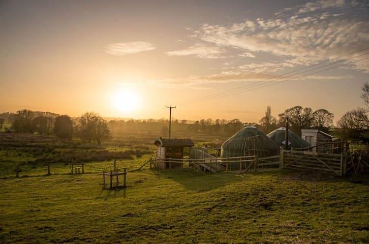 Fordhall Organic Farm Yurts