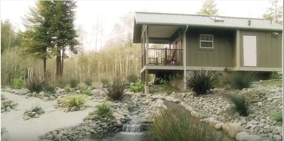 The Honeymoon Suite: Cottage In The CA Redwoods