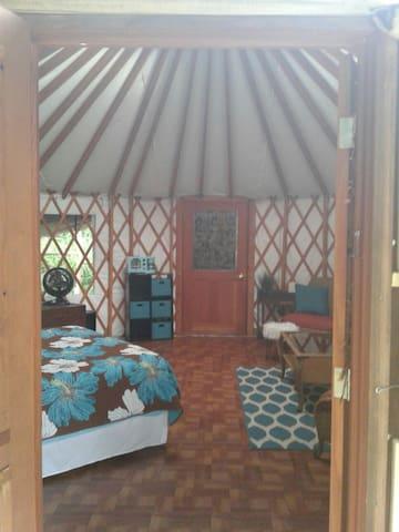 Beautiful yurt in tropical paradise