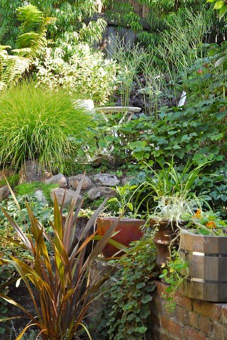 We love our abundant herb and flower cornucopia.