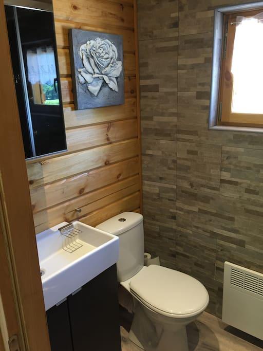 Salle d'eau avec vasque , WC et douche
