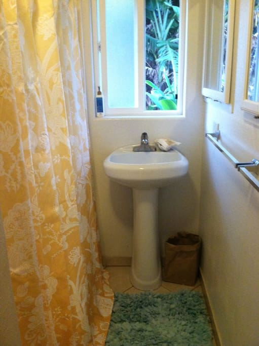 Your private bathroom has a toilet, sink, shower and bathtub.