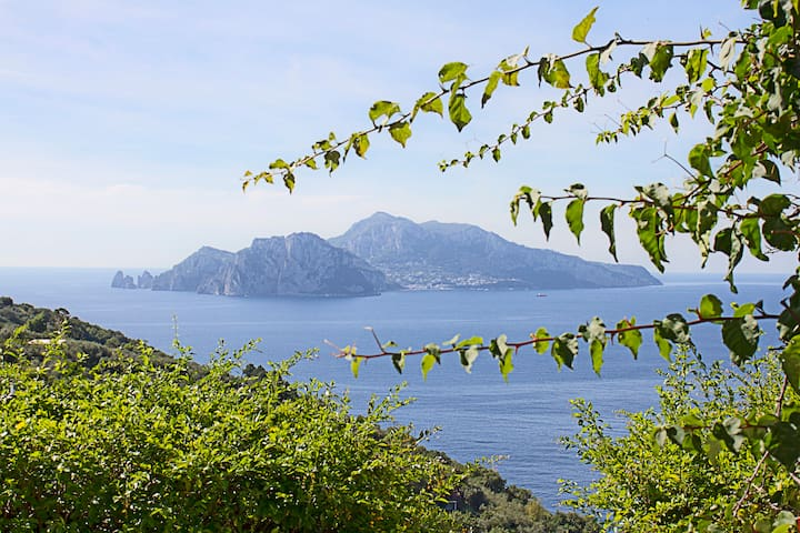Amazing Villa with sunset to Capri - Massa Lubrense - Villa
