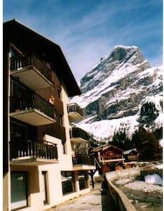au pied des pistes,  classé  et idéalement situé - Pralognan-la-Vanoise - อพาร์ทเมนท์