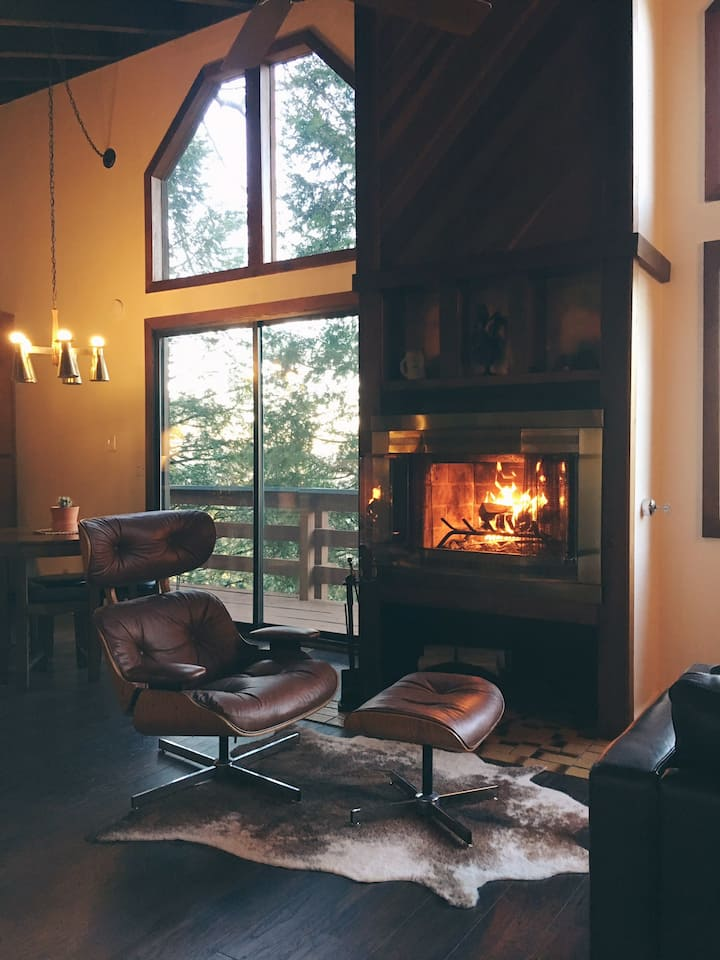 Magical Mid-Century Cabin Chalet w/ Forest Views!