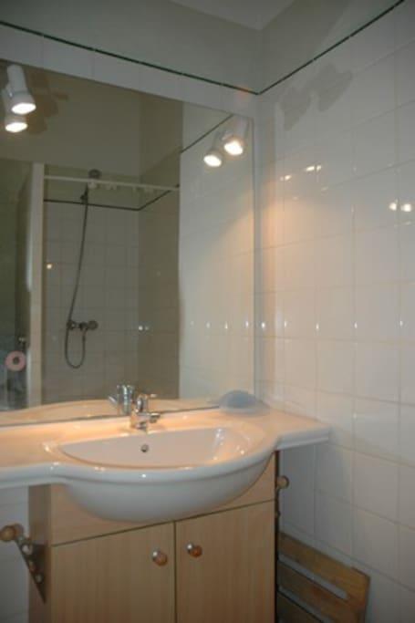 La salle d'eau indépendante avec WC, douche et grand lavabo