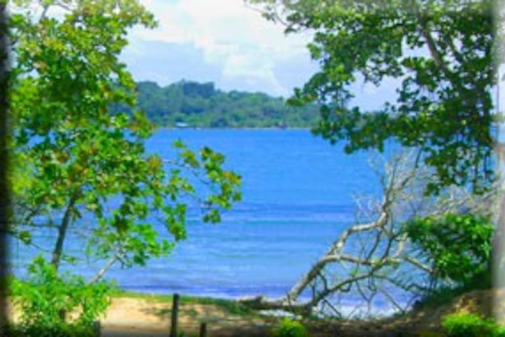 bocas del toro jewish dating site The largely jewish, italian, and arabic entrepreneurs of that zone live in panama city high-rises and commute daily in small airplanes  another region with a large afro-caribbean population is the province of bocas del toro on the caribbean coast just south of costa rica 29 vanessa brown-stlouis  he still has family in panama.