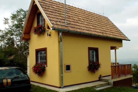 Kleines Haus auf einem Weinberg