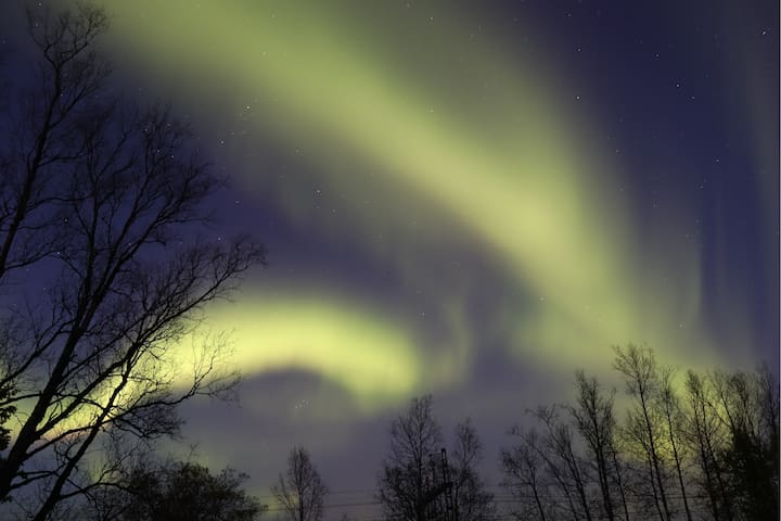 Northern lights above the dog cages