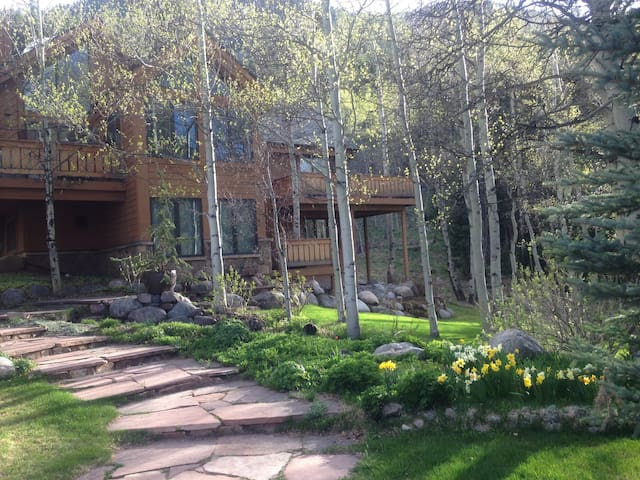 Springtime walkway up to the front door.