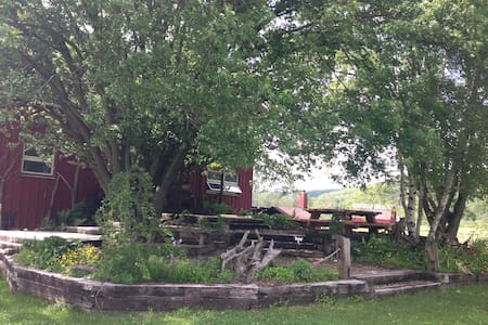 Cozy Renovated Barn on 122 acres - Shinglehouse - Bed & Breakfast